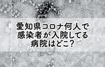 愛知県コロナ何人で 感染者が入院してる 病院はどこ?
